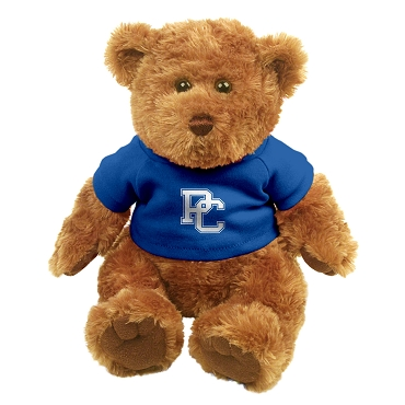 PC Plush Bear